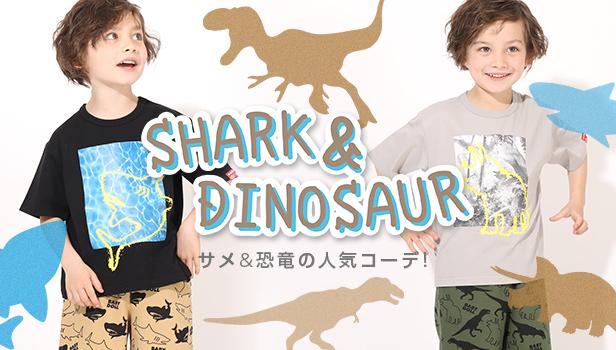 サメ恐竜ハシリーズ